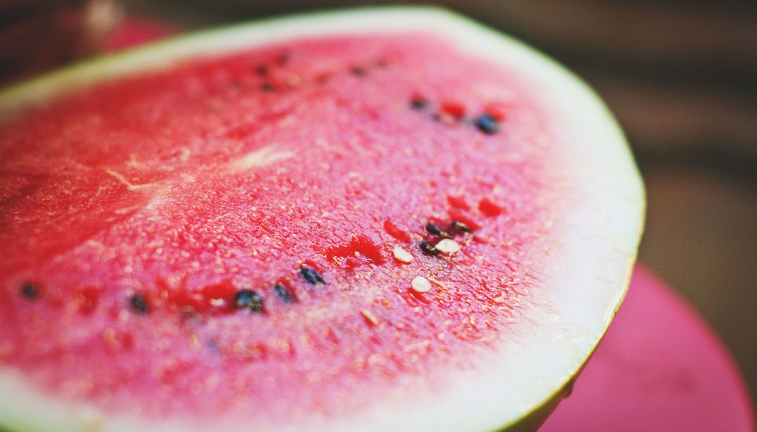 How You Can Make Money With Watermelon Farming